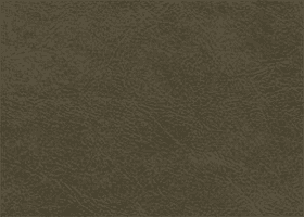 Leather - Stallone Black Moss