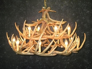 Whitetail Twenty Four Antler Chandelier