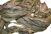 10 Yards Sari SILK Ribbon Avocado