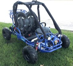 CYCLONE Gator GK 2  110cc  Go Kart.  All new for 2019,  Padded roll bars, coil over front shocks FREE SHIPPING
