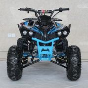 "Trailmaster TS 125cc  Sport Model Ultra Quad - Fully Automatic - Upgraded Suspension - 19"" Tires - Hydraulic Disc Brakes"