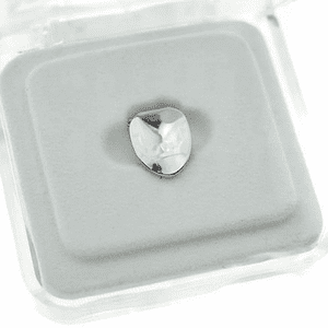 Silver Bottom Single Tooth