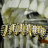 Gold Micro Pave Bottom Grillz