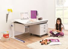 Only the Essentials Moll Desk Combo Bundle