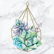 Geometric Succulents Beverage Napkins 192 ct