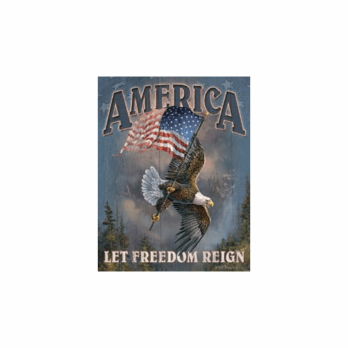 America - Let Freedom Reign Tin Sign