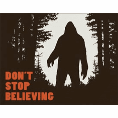 Don't Stop Believing Tin Signs