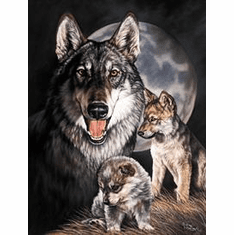 Graham - Wolf Experience Tin Sign