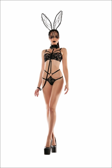 Fetish Fantasy Role Play Bunny Lace Playsuit