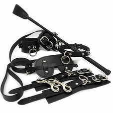 *First Love BDSM Kit*
