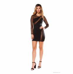 Long Sleeved Dress with Sheer Mesh Detail