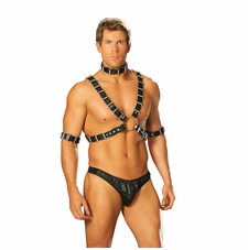 Men's 4 Piece Adjustable Harness Set