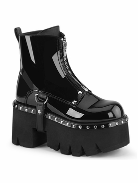 Pleaser Ashes-100 Chunky Heel Ankle Boot