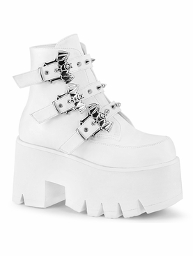 Pleaser Ashes-55 Chunky Heel Ankle Boot