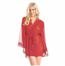 Sheer Robe With Lace Trim Collar