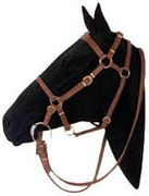 Syd Hill Halter Bridle with Reins,Saddle,Horse Tack