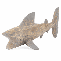 Albasia Shark - Small