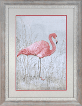 American Flamingo I Framed Art