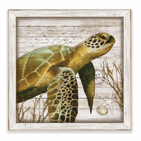 Antilles Turtle 1 Framed Art