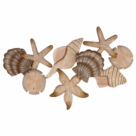 Array of Shells Wall Art