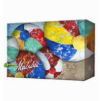 Beach Balls Personalized Aluminum Sign