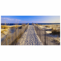 Beach Walk Indoor/Outdoor Canvas Art