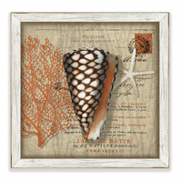 Beachcomber Shells 2 Framed Art