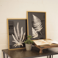 Black and White Fern Framed Prints - Set of 2