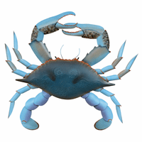 Blue Lagoon Crab Wall Hanging