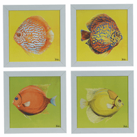 Bright Aquatic Life Framed Prints - Set of 4