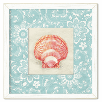 Cape Cod Seashell 2 Framed Print