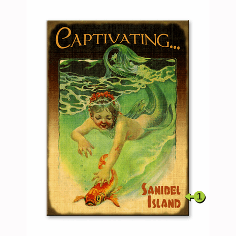 Captivating Mermaid and Fish Personalized Sign - 23 x 31