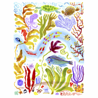 Caribbean Sealife Canvas Art