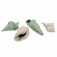 Ceramic Seashells Collection - Set of 4