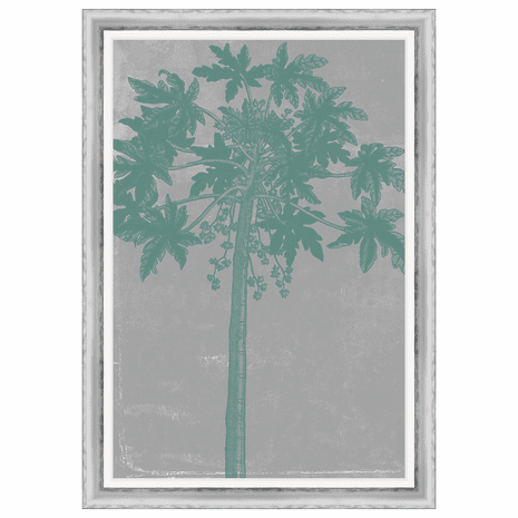 Chromatic Palms IX Framed Print