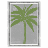 Chromatic Palms VII Framed Print