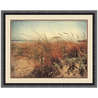 Coastal Shrubs II Canvas Art