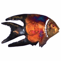 Copper Dripped Angelfish