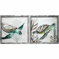 Coral Bay Tortoise Wall Art - Set of 2