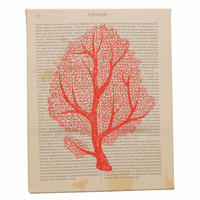Coral Novella Canvas Art - CLEARANCE