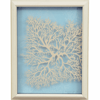 Coral Shadow Box - CLEARANCE
