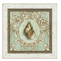 Driftwood Seashell II Framed Art