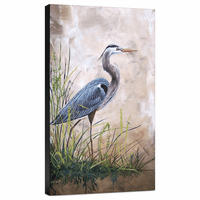 In the Reeds Blue Heron A Gallery Wrapped Canvas