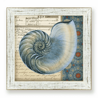 Indigo Blue Nautilus Framed Art