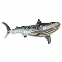 Medium Tiger Shark Wall Art