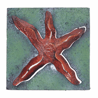 Mini Square Red-Orange Starfish Metal Wall Art
