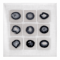 Nine Agate Slices Shadowbox Wall Art
