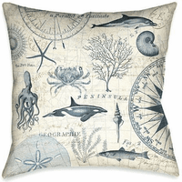 Ocean Geography Decorative Pillow