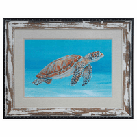 Ocean Sea Turtle I Framed Art