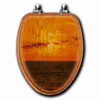 Orange Sunset Toilet Seats